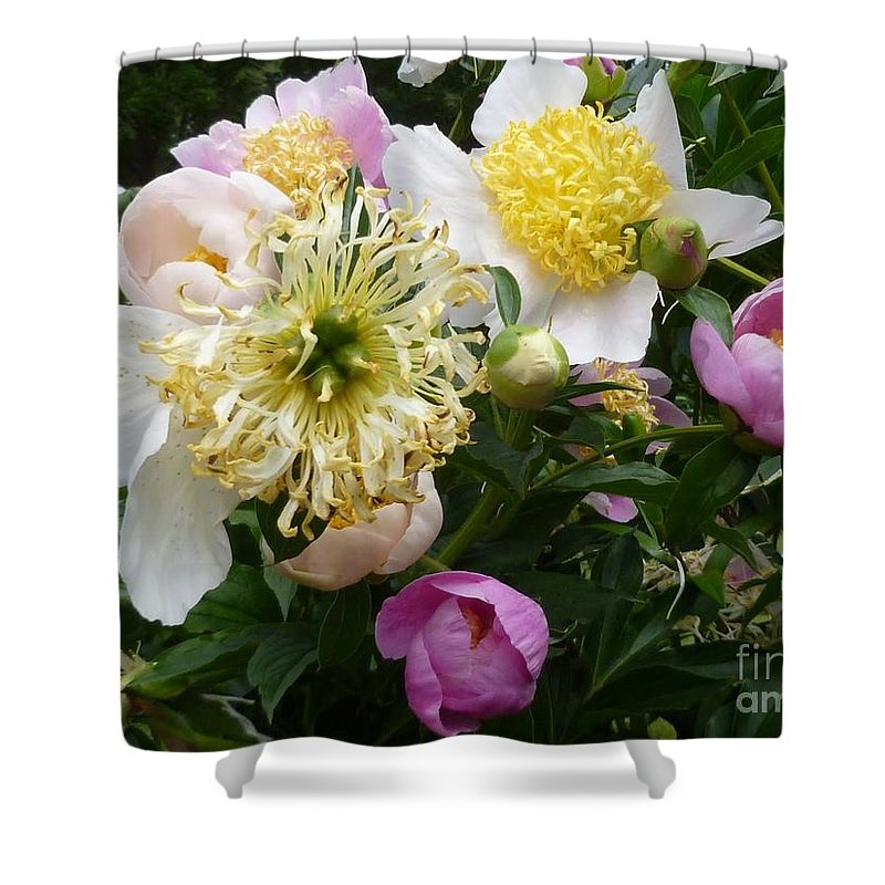 Flower Shower Curtain featuring the photograph Peonies Bouquet by Lingfai Leung