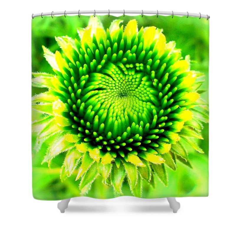 Green Shower Curtain featuring the photograph Perfect Symmetry by The Creative Minds Art and Photography