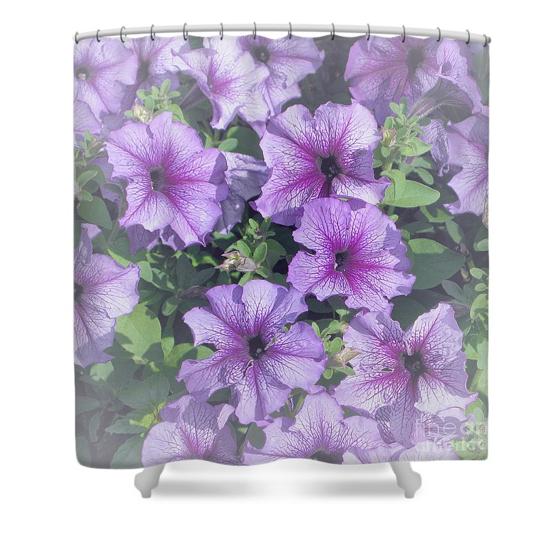 Petunias Shower Curtain featuring the photograph Petunia Patch by Ann Horn