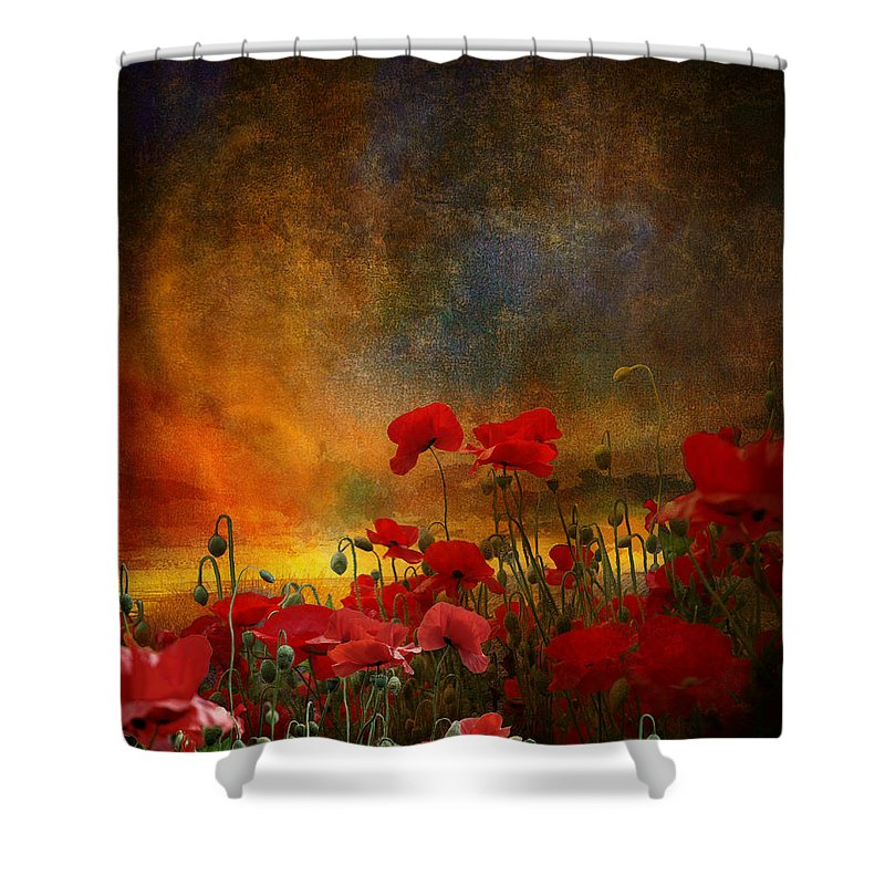 Poppies Shower Curtain featuring the photograph Phil by Jeff Burgess