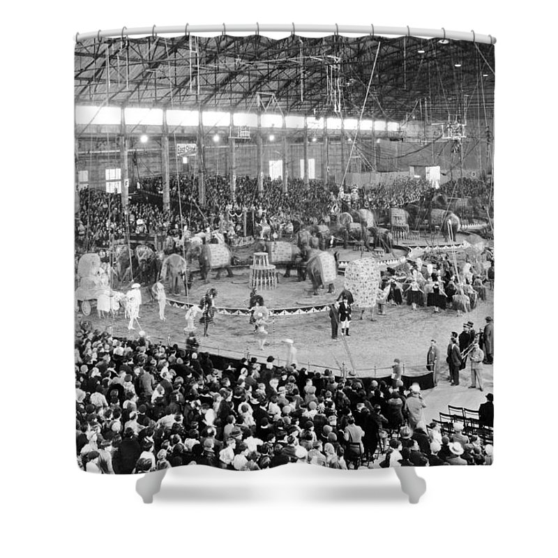 Three Ring Circus Shower Curtains