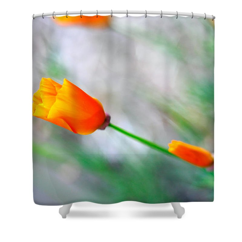 Orange Shower Curtain featuring the photograph Pick Me by Teri Schuster
