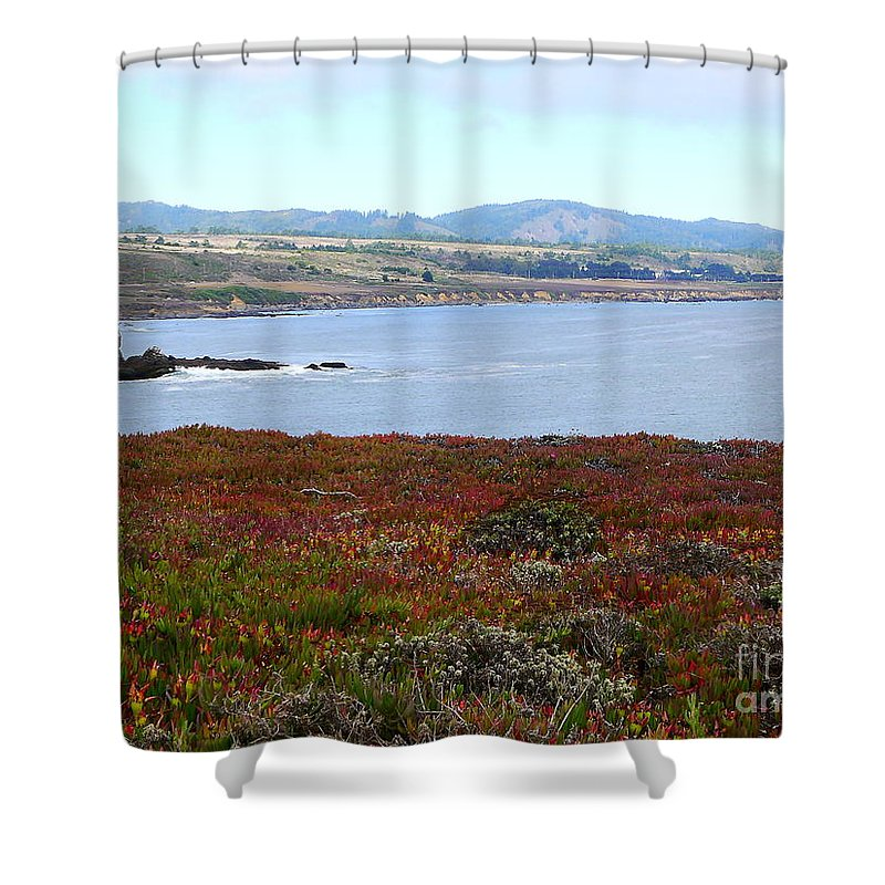 Glorious View Shower Curtain featuring the photograph Pigeon Point Bay by Christiane Schulze Art And Photography