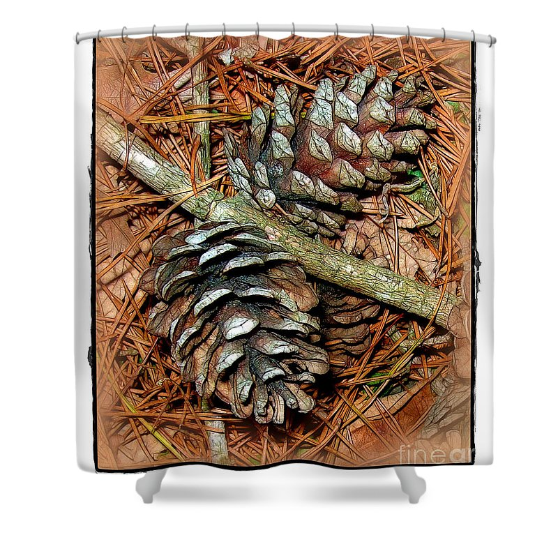 Pine Shower Curtain featuring the photograph Pine Cones by Judi Bagwell