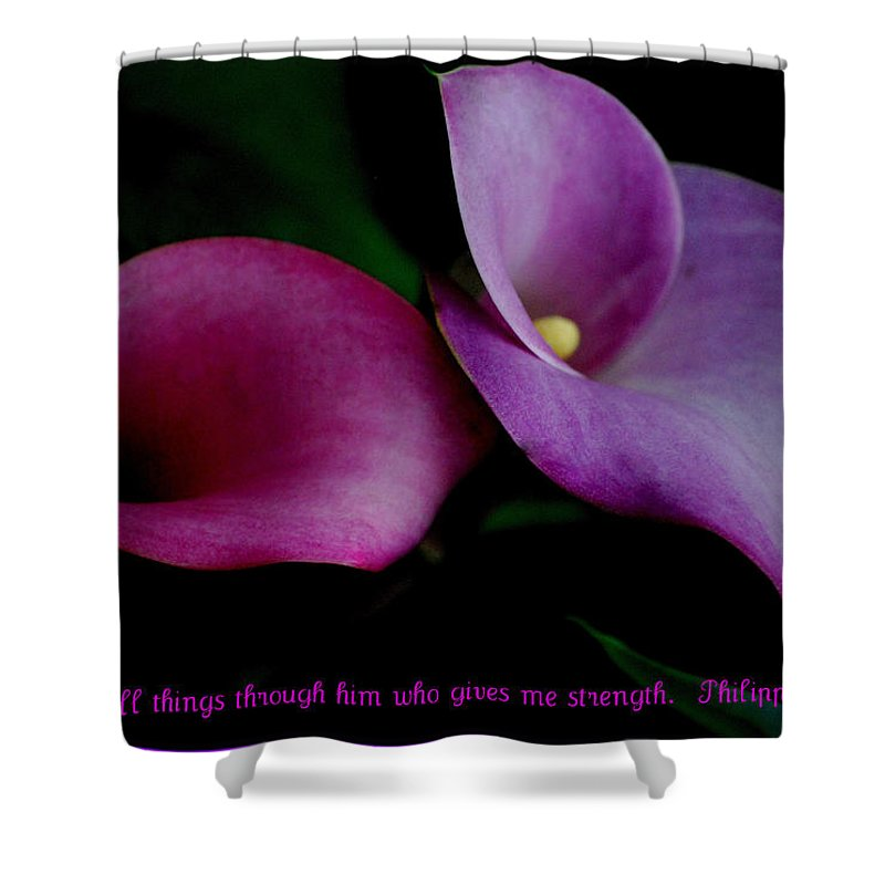 Calla Shower Curtain featuring the photograph Pink An Purple Calla Lilys by Kathy Sampson