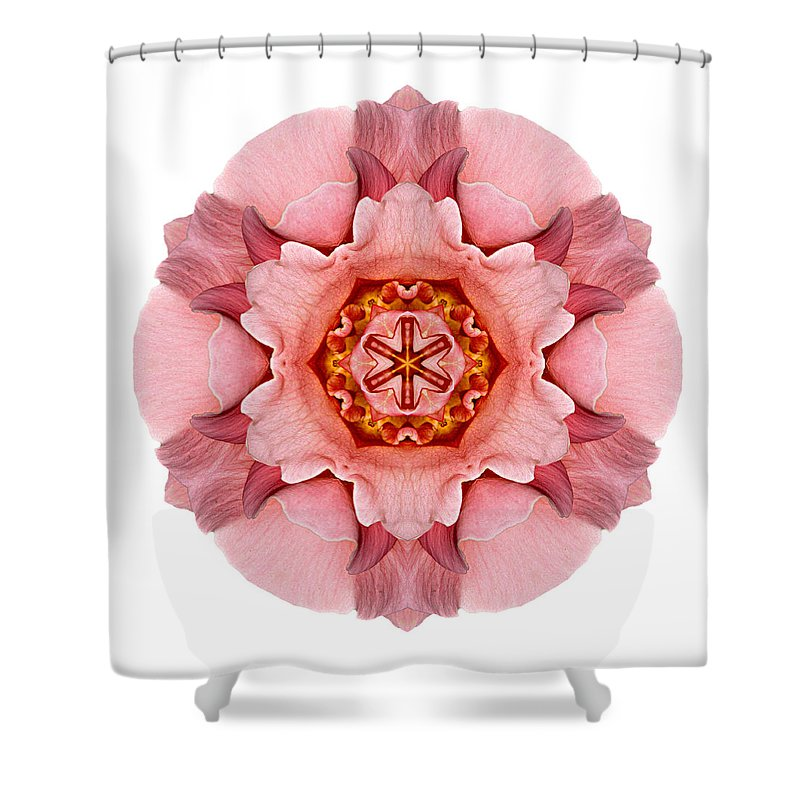 Flower Shower Curtain featuring the photograph Pink And Orange Rose Iv Flower Mandala White by David J Bookbinder