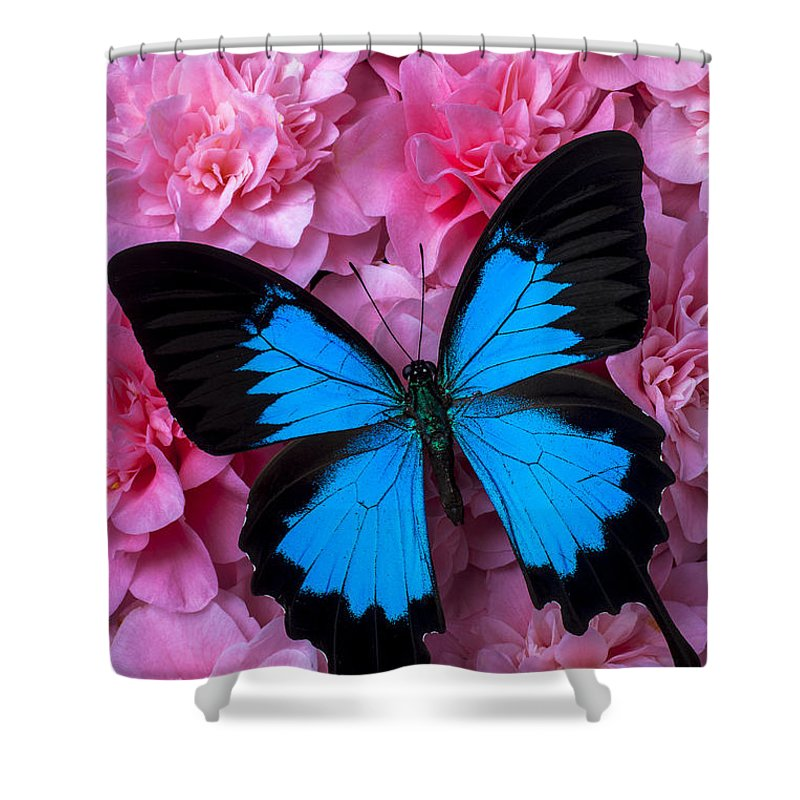 Pink Camillas Cultivation Shower Curtain Featuring The Photograph Camilla And Blue Butterfly By Garry Gay