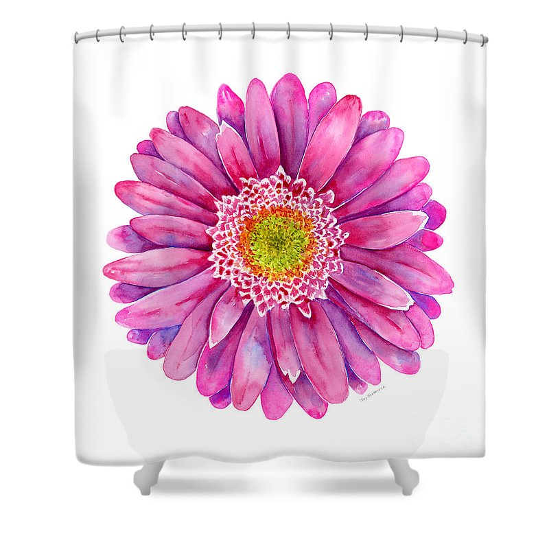 Pink Gerbera Daisy Shower Curtain For Sale By Amy Kirkpatrick