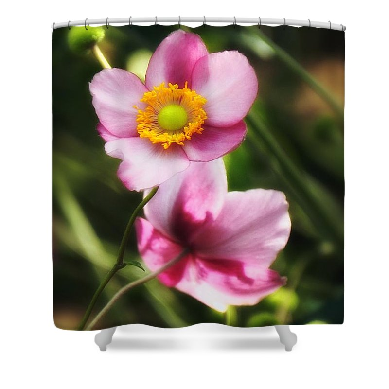 Pink Shower Curtain featuring the photograph Pink Japanese Anemone by Sharon Woerner