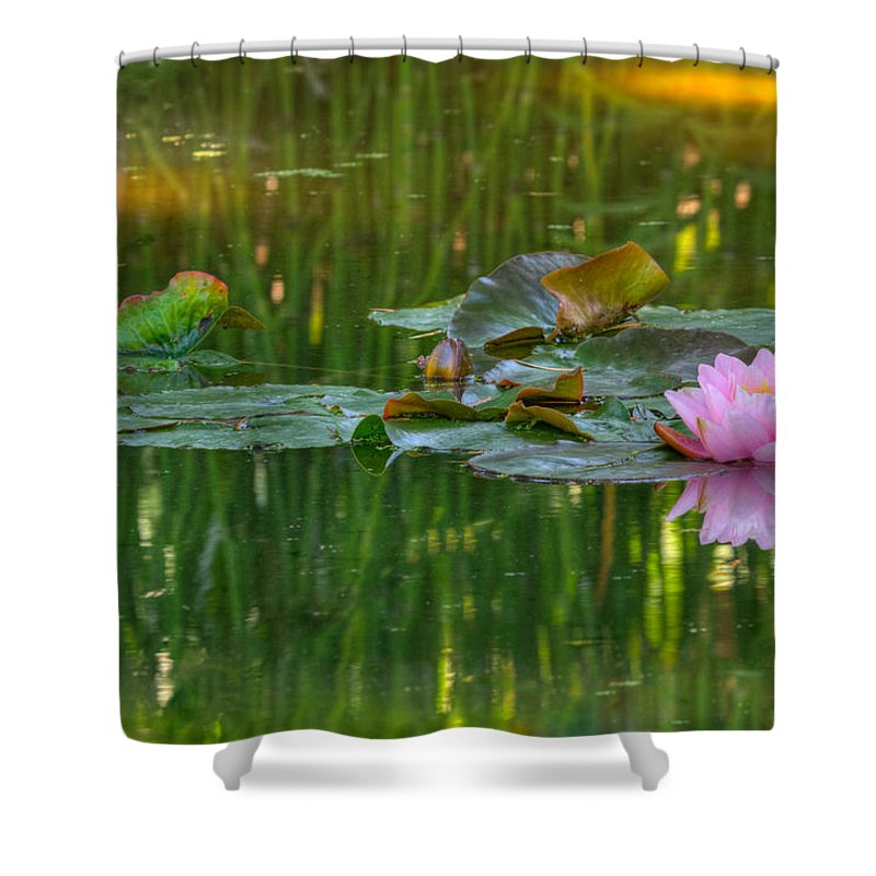 California Shower Curtain featuring the photograph Pink Lotus Flower by Beth Sargent