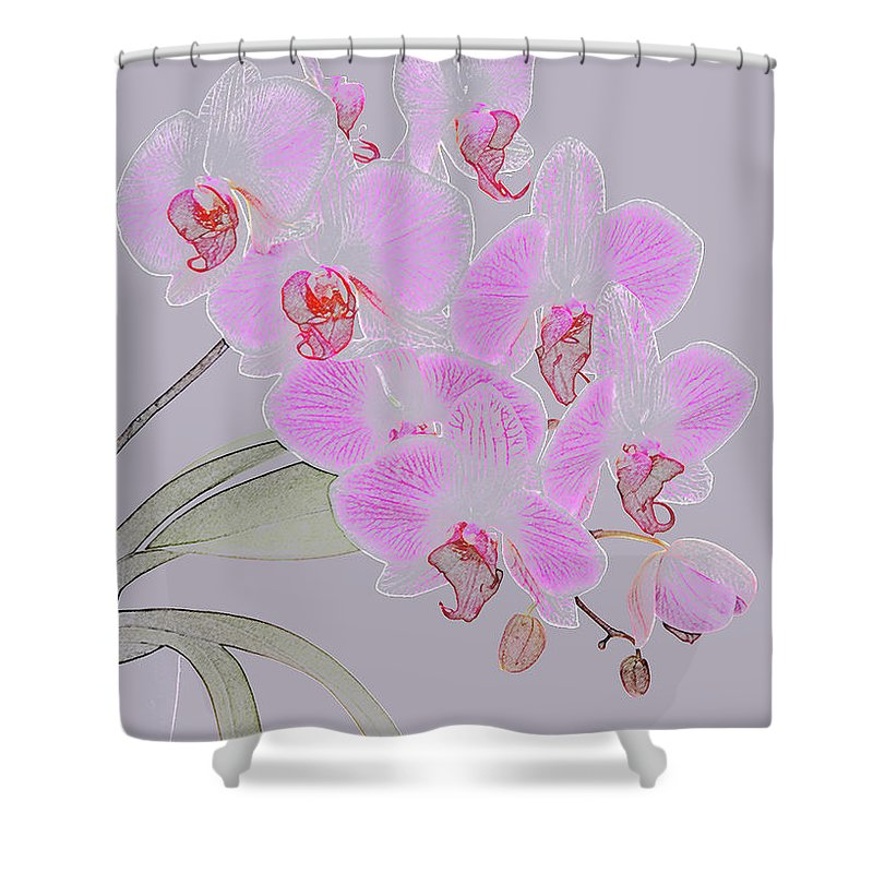 Haslemere Shower Curtain featuring the photograph Pink Orchids As Coloured Pencil Drawing by Rosemary Calvert