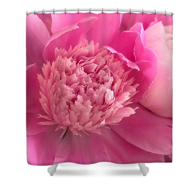 Pink Flower Shower Curtain featuring the photograph Pink Peony by Charlene Palmer