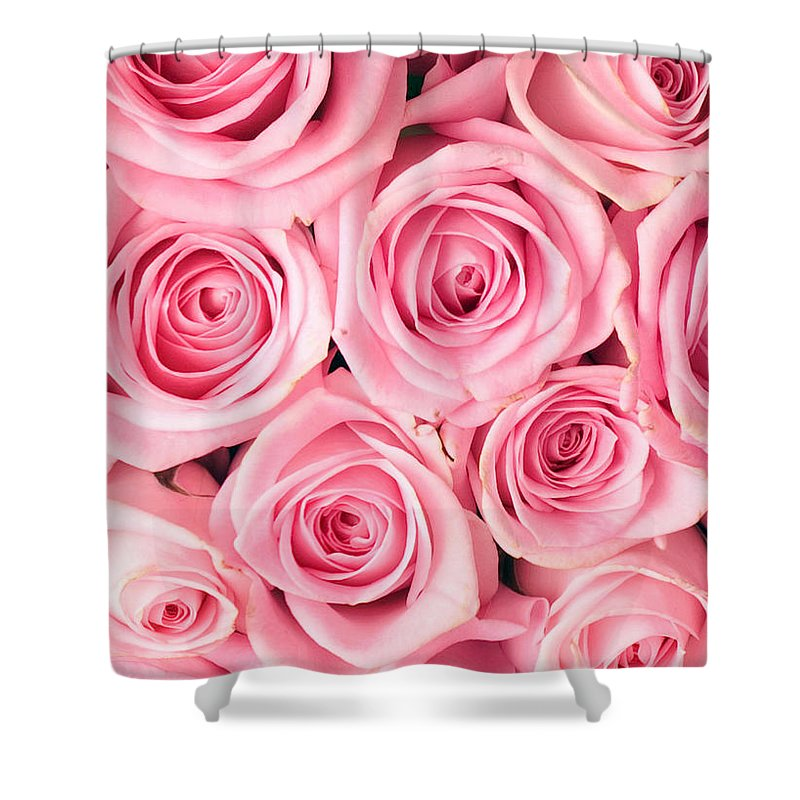 Pink Shower Curtain featuring the photograph Pink Roses by Munir Alawi
