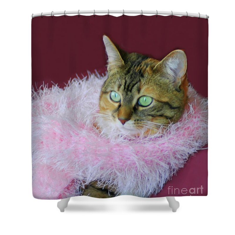Cat Shower Curtain featuring the photograph Pink Scarf by Kathleen Struckle