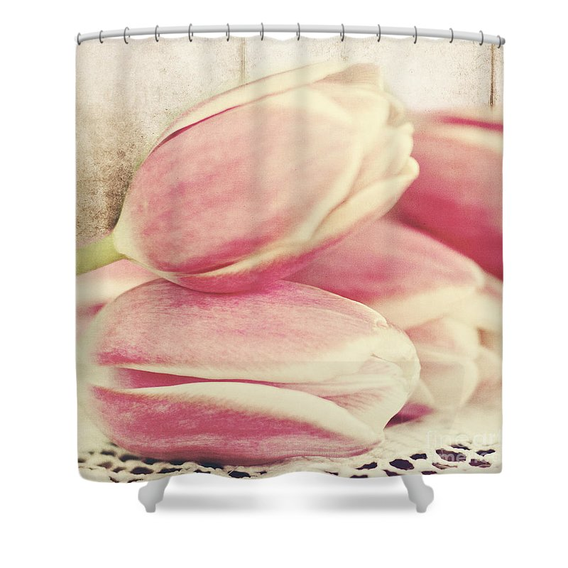 Tulips Shower Curtain featuring the photograph Pink Tulips by Pam Holdsworth