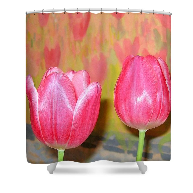Pink Tulips Shower Curtain featuring the photograph Pink Tulips by Will Borden
