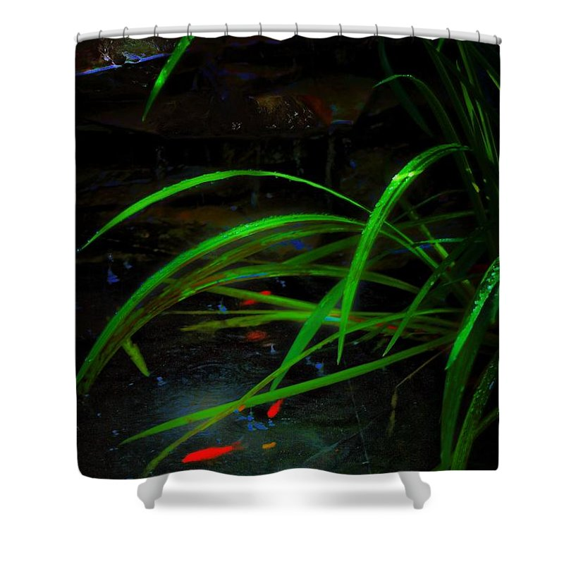 Fish Shower Curtain featuring the photograph Playin Koi by Robert McCubbin