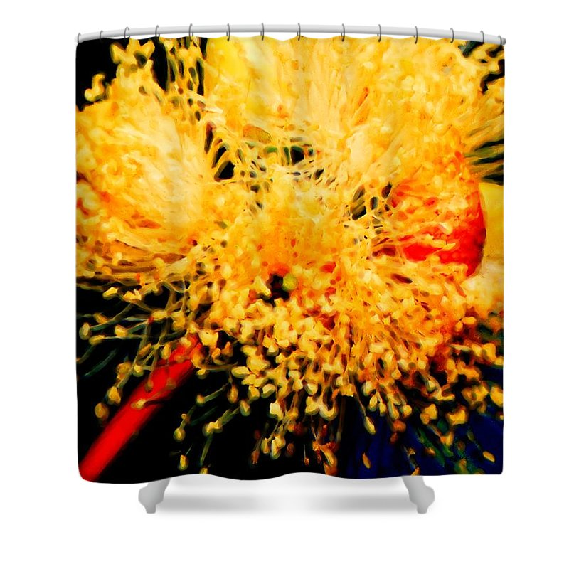 Pollenate Shower Curtain featuring the photograph Pollenate by Cathy Anderson