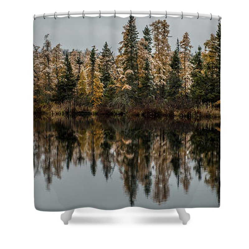 Tamarack Shower Curtain featuring the photograph Pond Reflections by Paul Freidlund