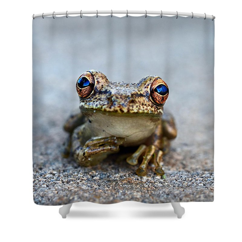 Frogs Shower Curtains