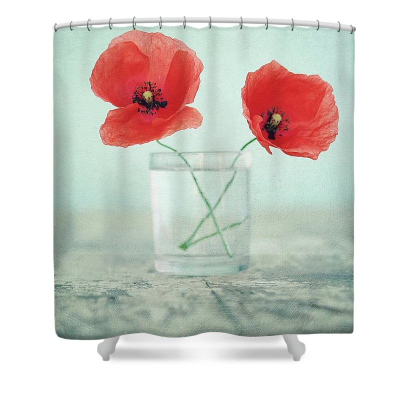 Bulgaria Shower Curtain featuring the photograph Poppies In A Glass, Still Life by By Julie Mcinnes