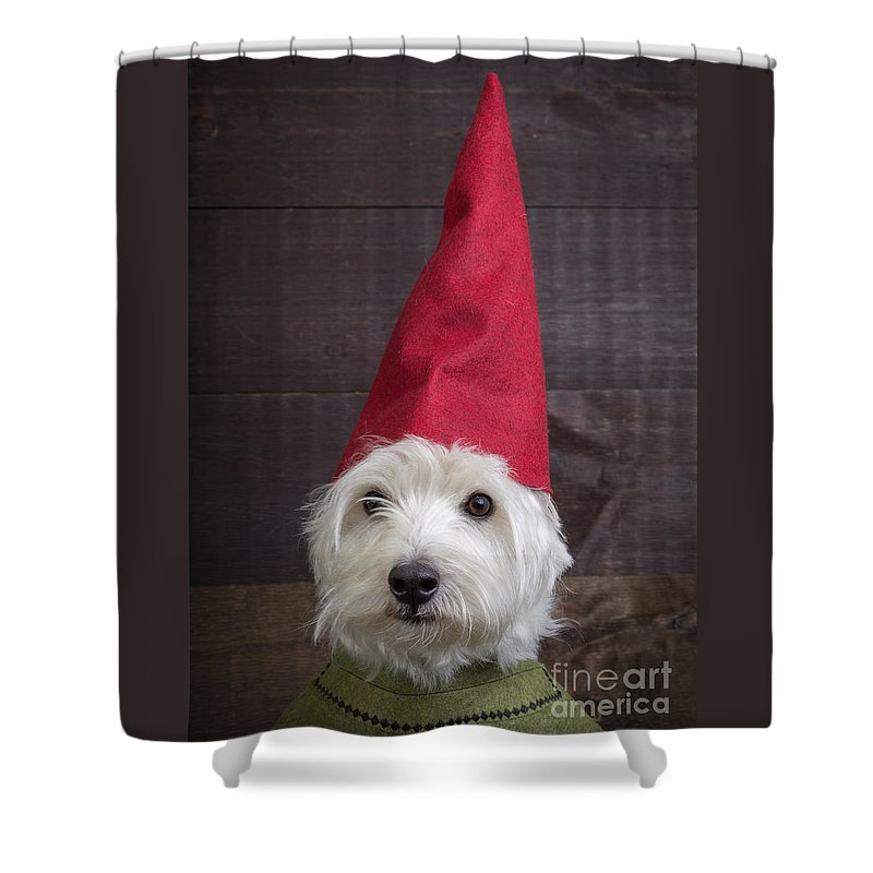 Garden Shower Curtain Featuring The Photograph Portrait Of A Gnome By Edward Fielding