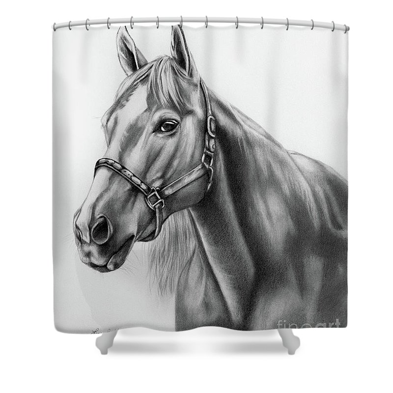 Portrait Shower Curtain featuring the drawing Portrait Of A Horse by Lena Auxier