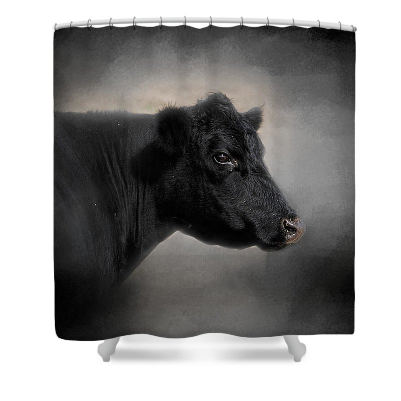 Angus Shower Curtain featuring the photograph Portrait Of The Black Angus by Jai Johnson