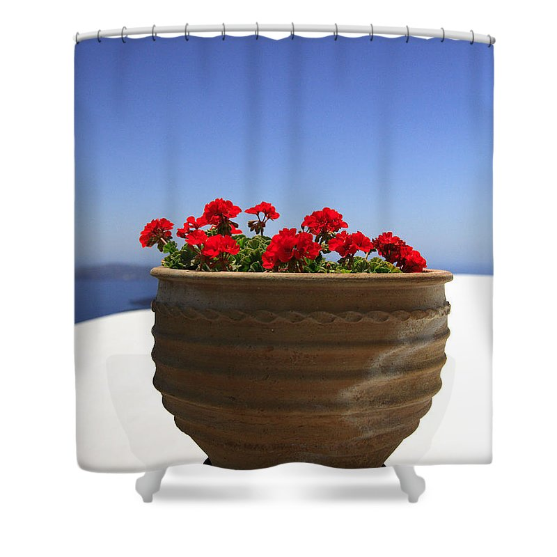 Bloom Shower Curtain featuring the photograph Potted Geranium by Deborah Benbrook