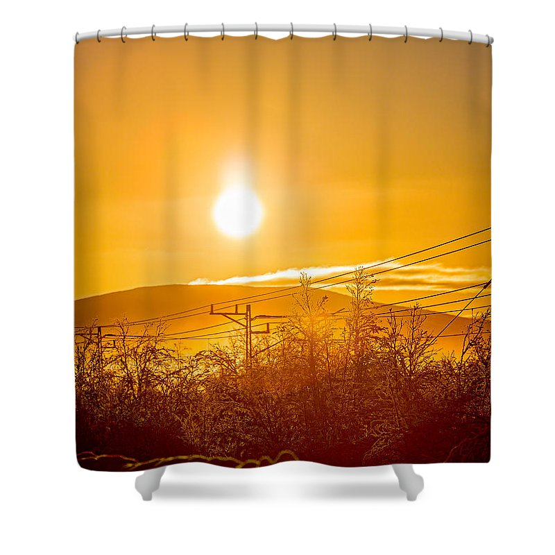 Photography Shower Curtain featuring the photograph Power Lines And Trees In The Frozen by Panoramic Images