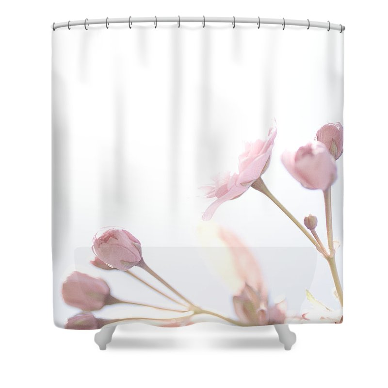 Art Shower Curtain featuring the photograph Pretty In Pink - The Dreamer by Lisa Parrish