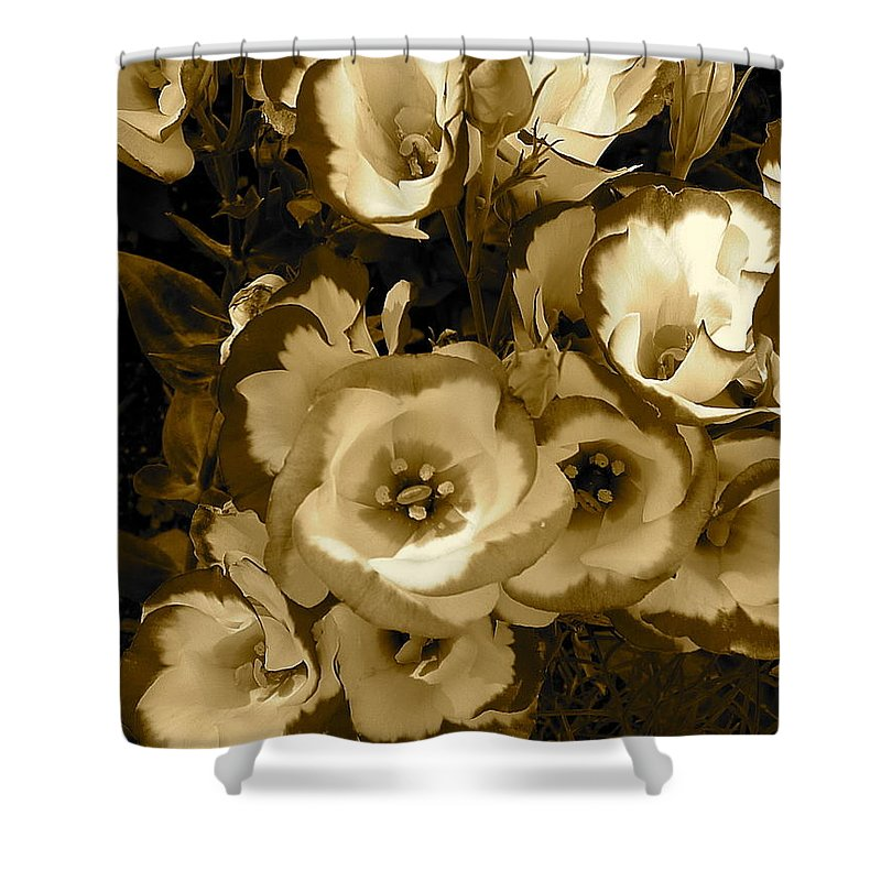 Sepia Shower Curtain featuring the photograph Pretty Petals 2 by Denise Mazzocco