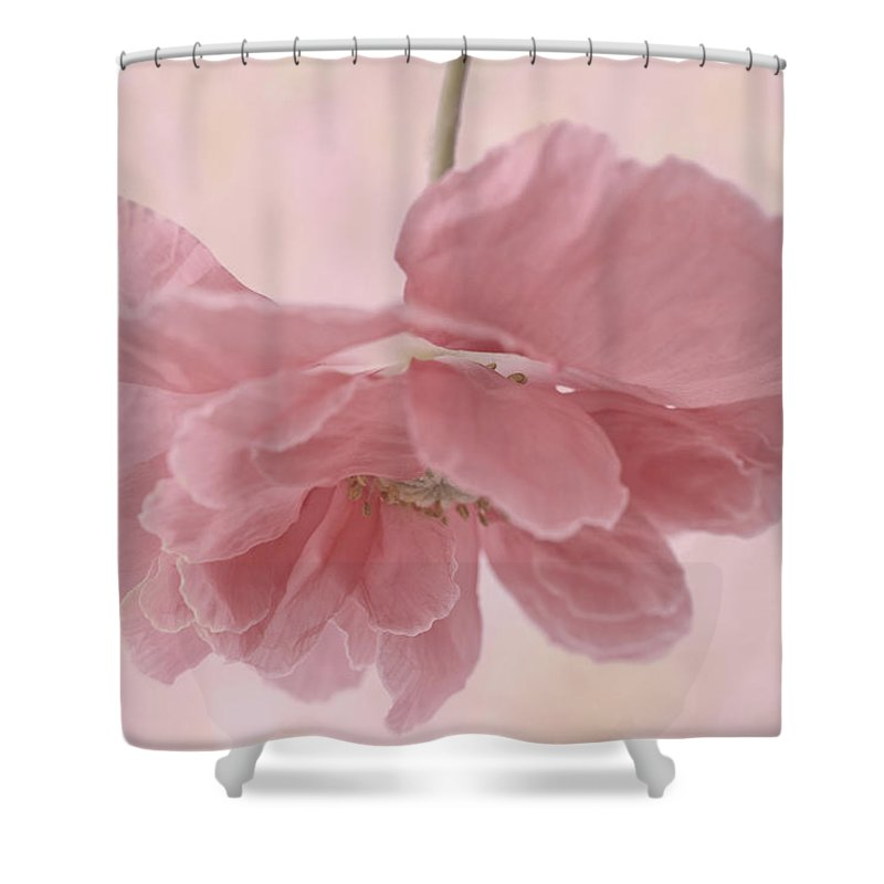 Poppy Shower Curtain featuring the photograph Pretty Pink Poppy Macro by Sandra Foster