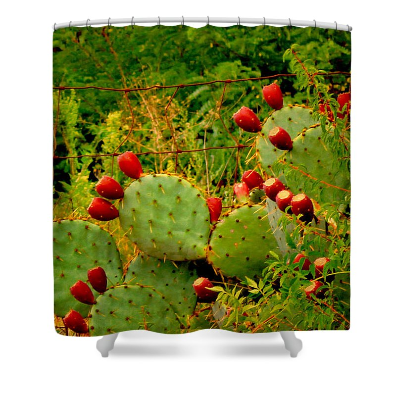 Cactus Shower Curtain featuring the photograph Prickly Pear Cactus by Bonnie Willis