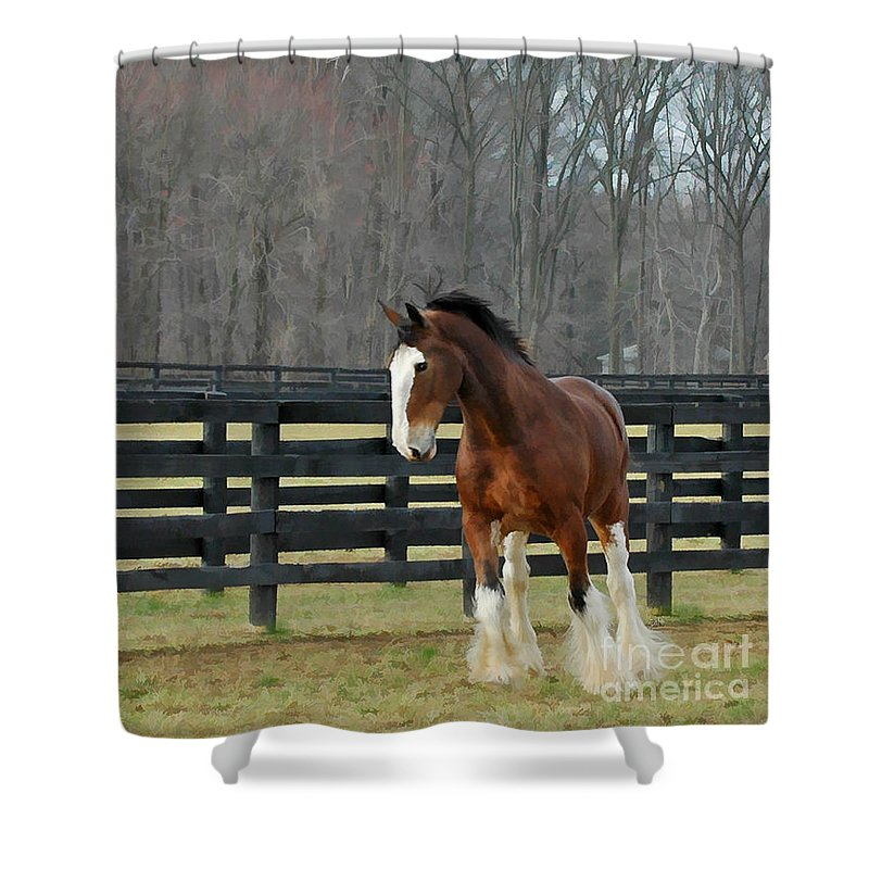 Landscape Shower Curtain featuring the photograph Prince Charming by Sami Martin