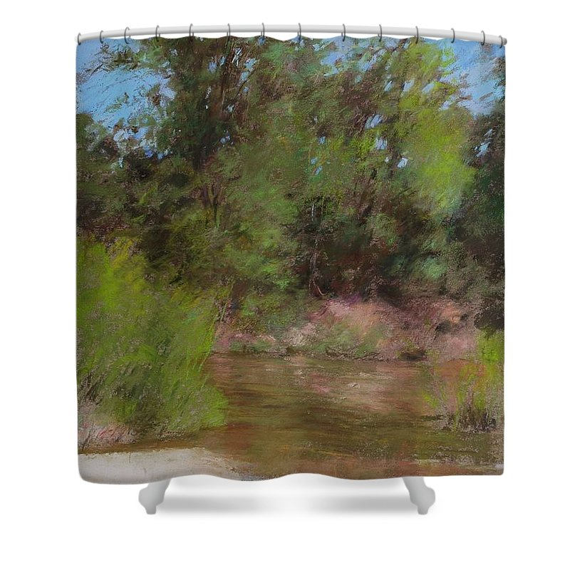 Limited Edition Prints Shower Curtain featuring the painting Prints Wall Art Collections by N S