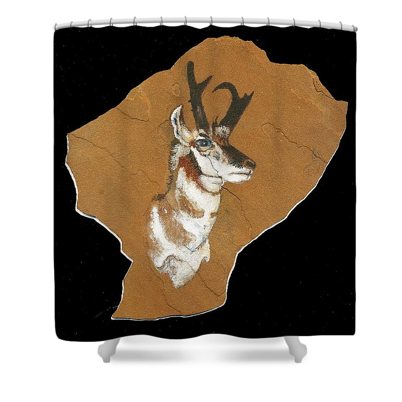 Wildlife Shower Curtain featuring the painting Pronghorn Pictograph by Dale Jackson