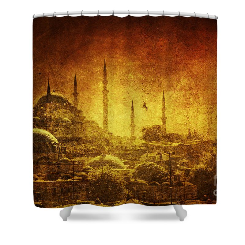 Turkey Shower Curtain featuring the photograph Prophetic Past by Andrew Paranavitana