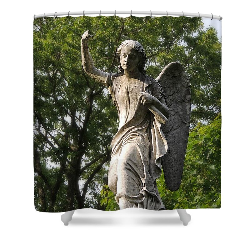 Trees Shower Curtain featuring the photograph Protector Of The Yard by Michele Nelson