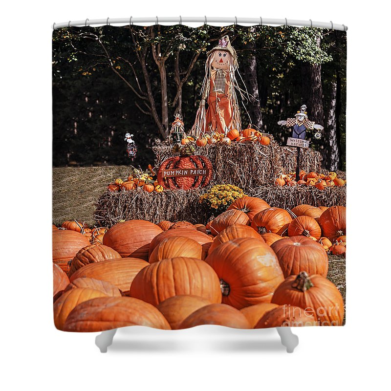 Landscape Shower Curtain featuring the photograph Pumpkins For Sale by Elvis Vaughn