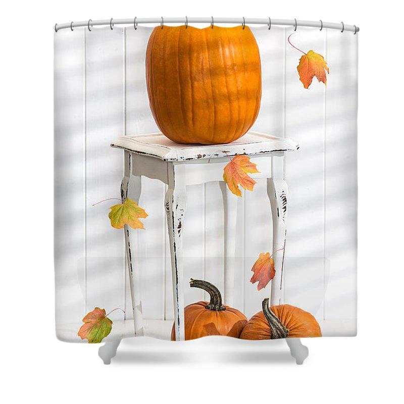 Pumpkins Shower Curtain featuring the photograph Pumpkins For Thanksgiving by Amanda Elwell