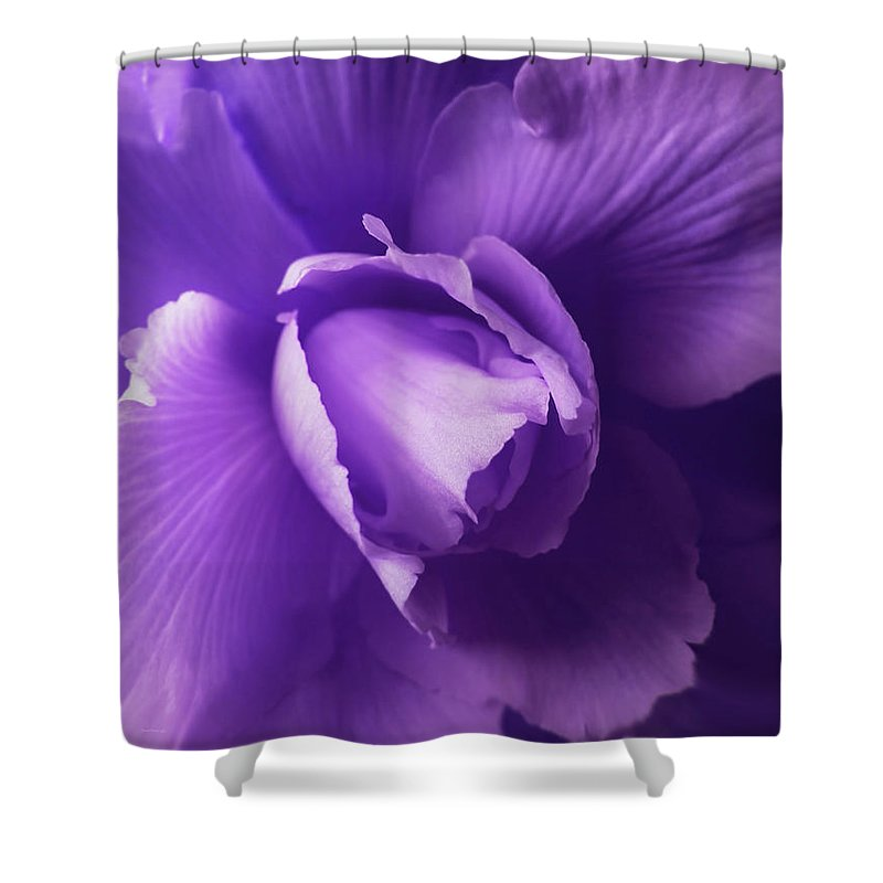 Begonia Shower Curtain featuring the photograph Purple Begonia Flower by Jennie Marie Schell