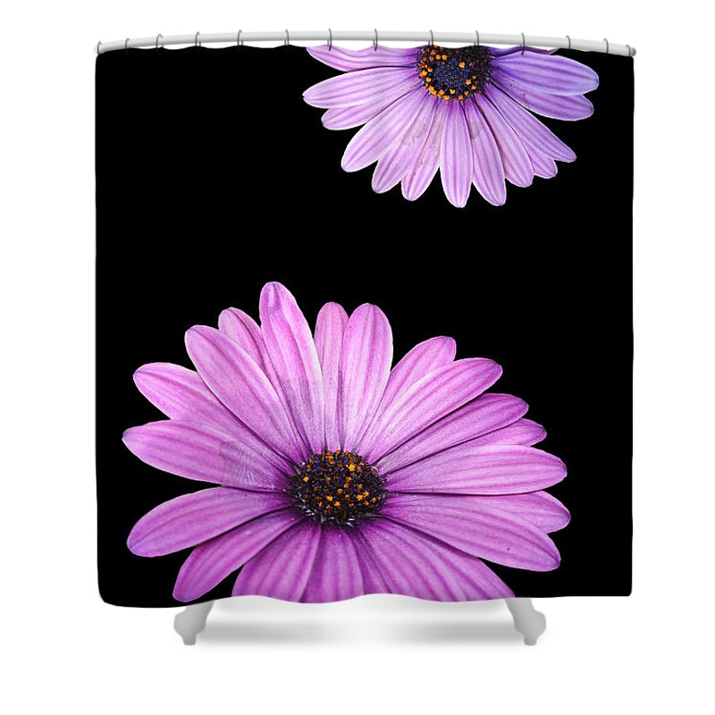 Agriculture Shower Curtain featuring the digital art Purple Flowers by Nathan Wright