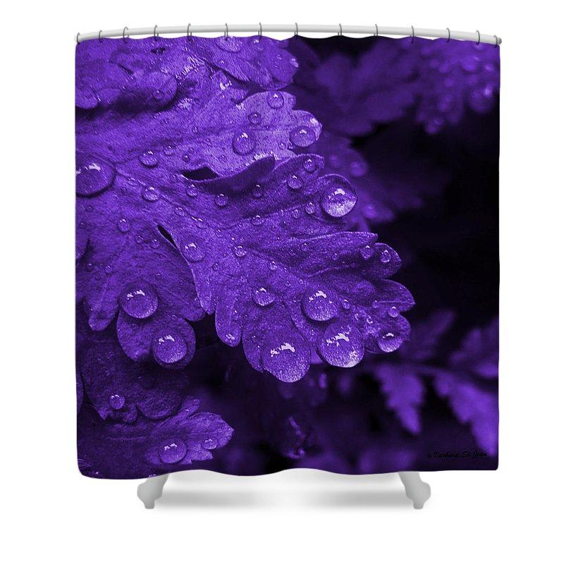 Photograph Shower Curtain featuring the photograph Purple Rain by Barbara St Jean