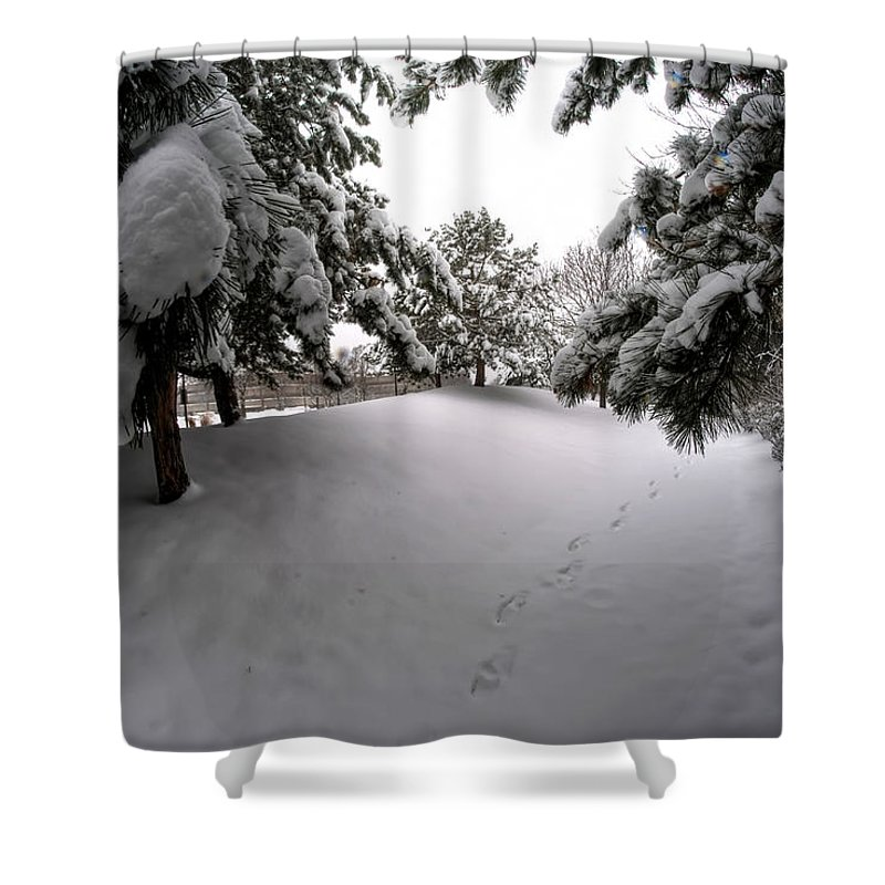 Buffalo Shower Curtain featuring the photograph Queen City Winter Wonderland After The Storm Series 0030 by Michael Frank Jr