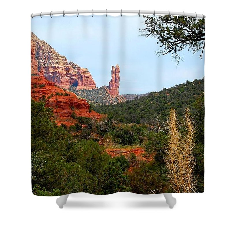 Arizona Shower Curtain featuring the photograph Rabbit Ears by Miles Stites