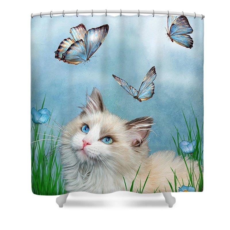 Ragdoll Cat Shower Curtains | Fine Art America