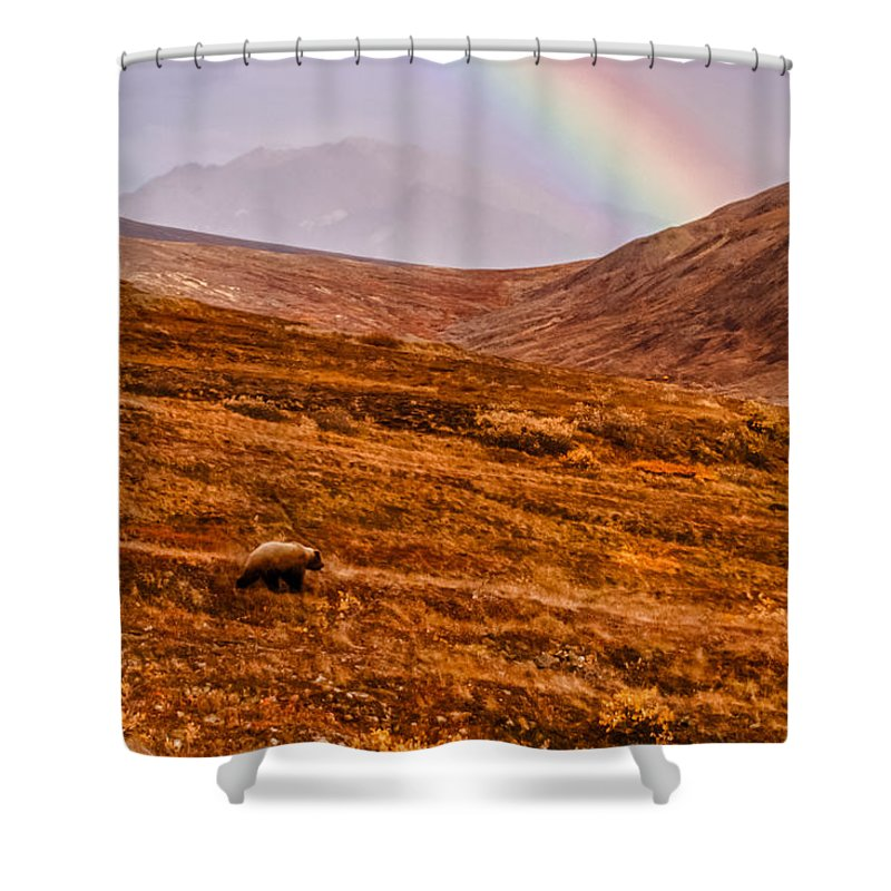 Ursus Arctos Horribilis Shower Curtain featuring the photograph Rainbow Over Grizzly In Denali by Jeff Folger