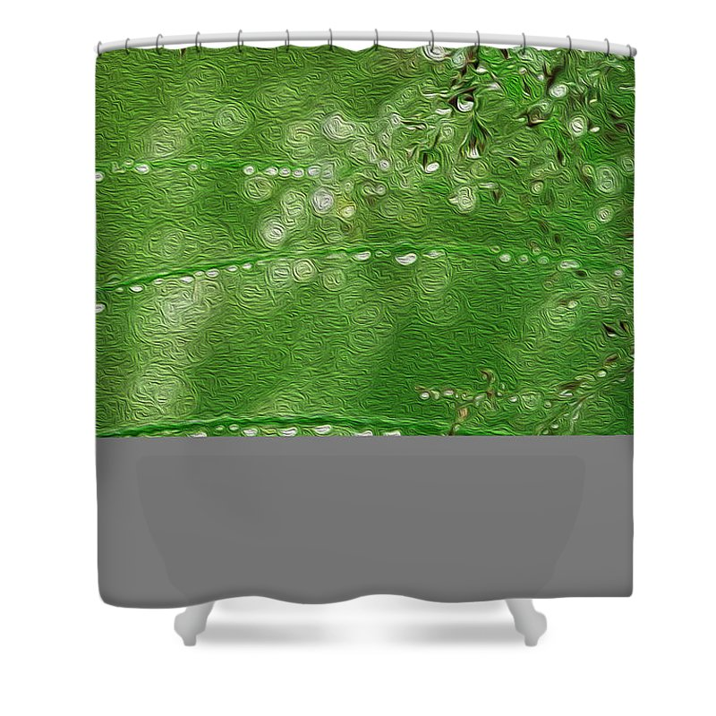 Raindrops Shower Curtain featuring the painting Rainkissed by Todd L Thomas