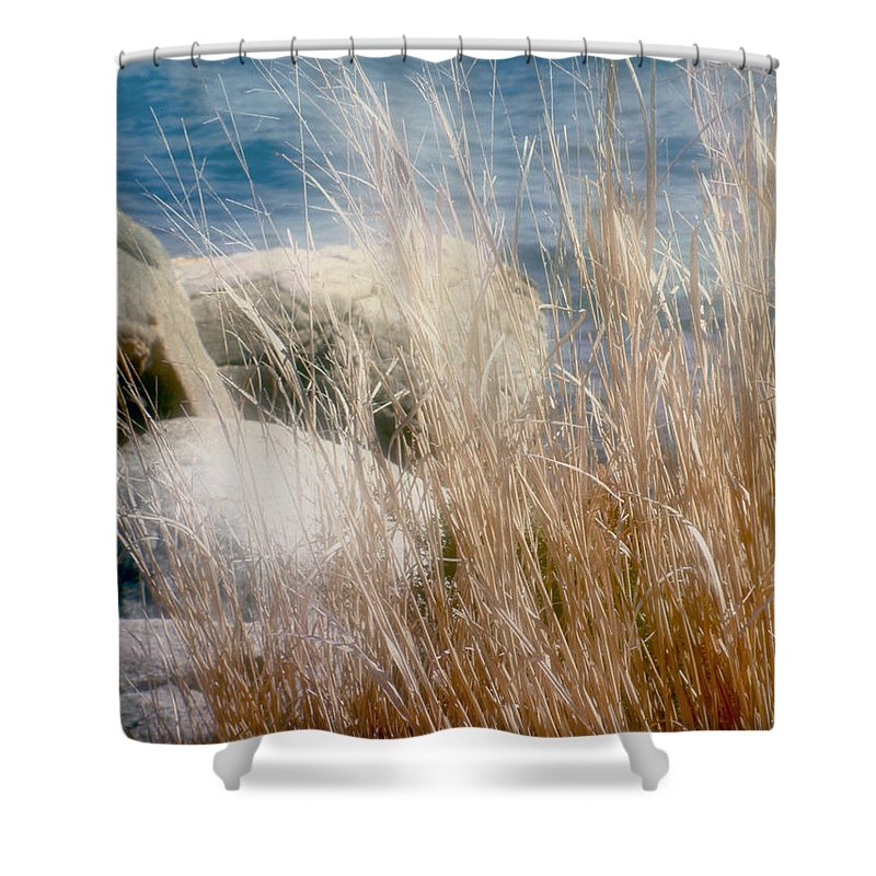 Reeds Shower Curtain featuring the photograph Rapunzel Reeds by RC DeWinter